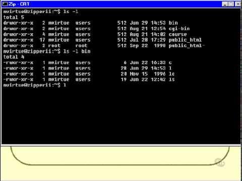 03. Unix Shell Scripting Tutorial – Running a Shell Script (Part2)